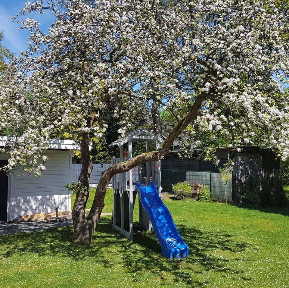 Garten Und Landschaftsbau Quickborn sören larsson garten und landschaftsbau